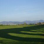 Con bando housing nel Municipio 12, ben 137 ettari di campagna romana cementificati con 1,2milioni di metri cubi