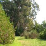 Legambiente presenta la proposta di riforma della legge sui Parchi del Lazio