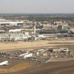 Abbattuti 1000 alberi in area confinante aeroporto di Fiumicino Legambiente ha richiesto verifica di legittimità