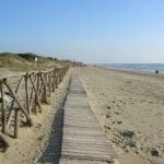Spiagge e fondali puliti: raccolti cinque quintali di rifiuti abbandonati nel week end di Legambiente