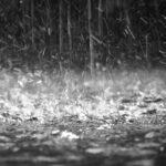 Tornado a Roma Nord, vittime, allagamenti, alberi caduti, tetti scoperchiati