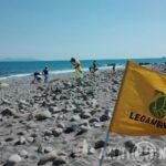 Dossier: beach litter